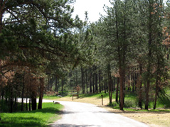 elk mountain campground \ wind cave national park