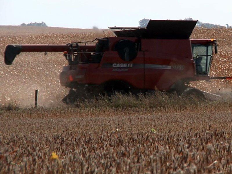 Farms Crops