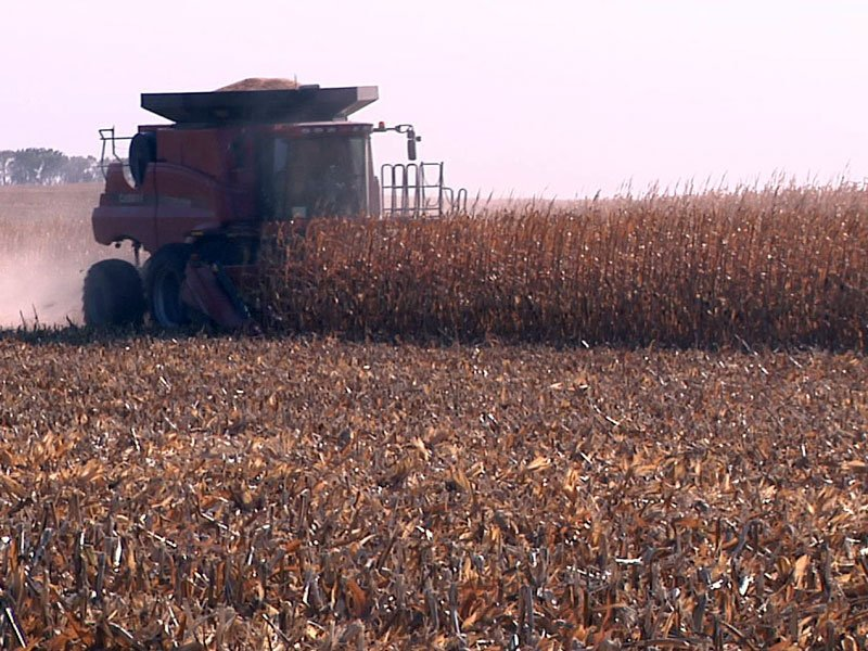 harvest season in eastern keloland, walt bones