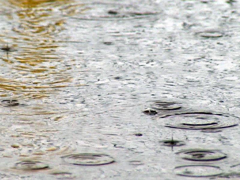 rain sprinkle water