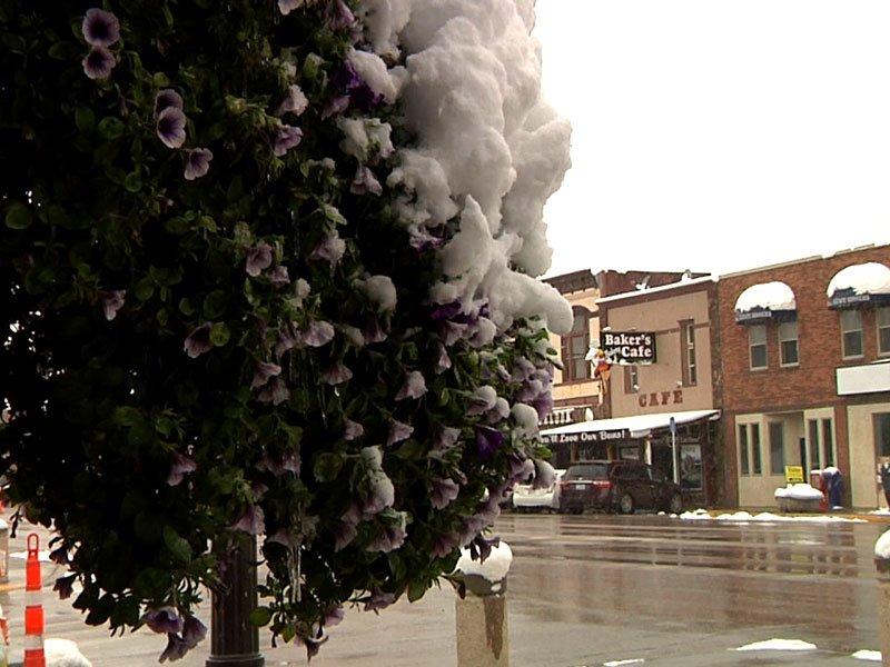 snowfall in Black Hills